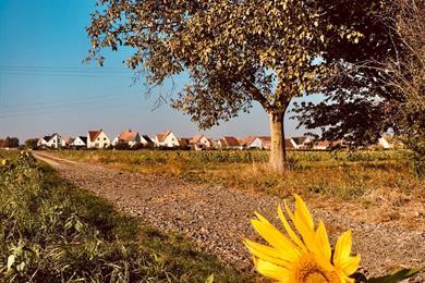 Wintershuis