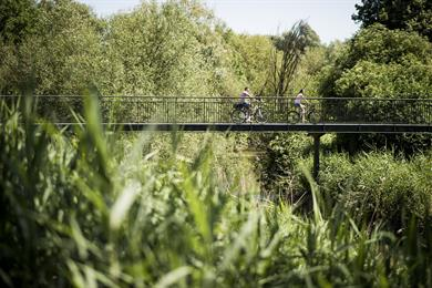 A cycling festival in the Exceptional Forest®
