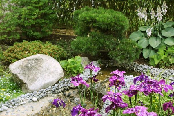 Jardin japonnais zen - © jardins de gaïa