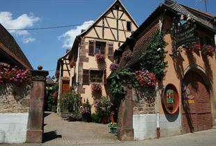 Wines Maison Zoeller