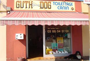 Guth Dog toilettage
