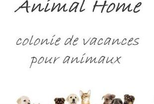 Animal Home Tierpension