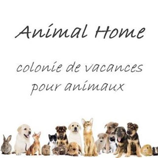 https://www.facebook.com/animalhome68