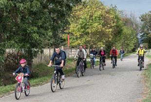 Bicycle tours in the region Molsheim-Mutzig