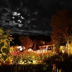 Féeries nocturnes aux jardins du Parc de Wesserling - © JCB Diffusion