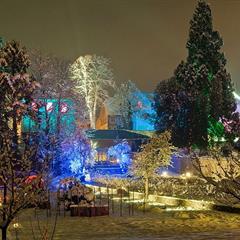 Noël aux jardins du Parc de Wesserling - © MaximeLeiby