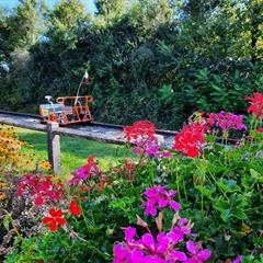 - © ©Vélo rail Sud Alsace
