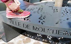 La Molshemienne, laufen oder rennen