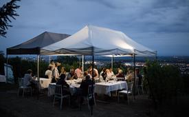 Gourmet dinner in the vineyard