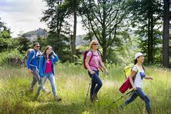 Walkers Alsace © INFRA-ADT BAS-RHIN 013_FVU0462
