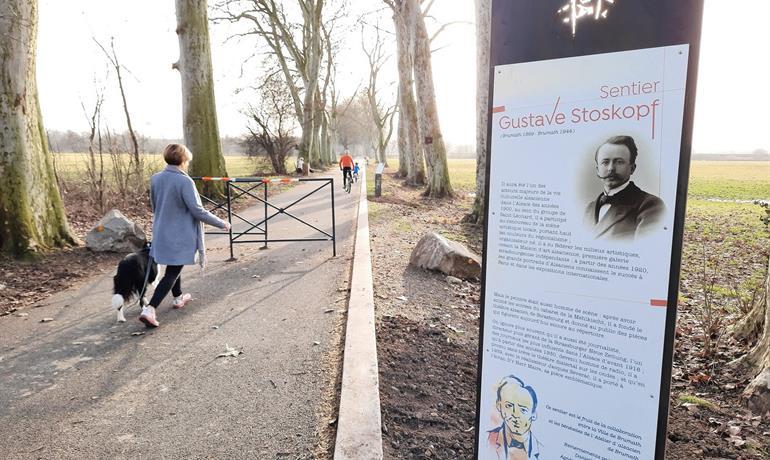 Le sentier Gustave Stoskopf