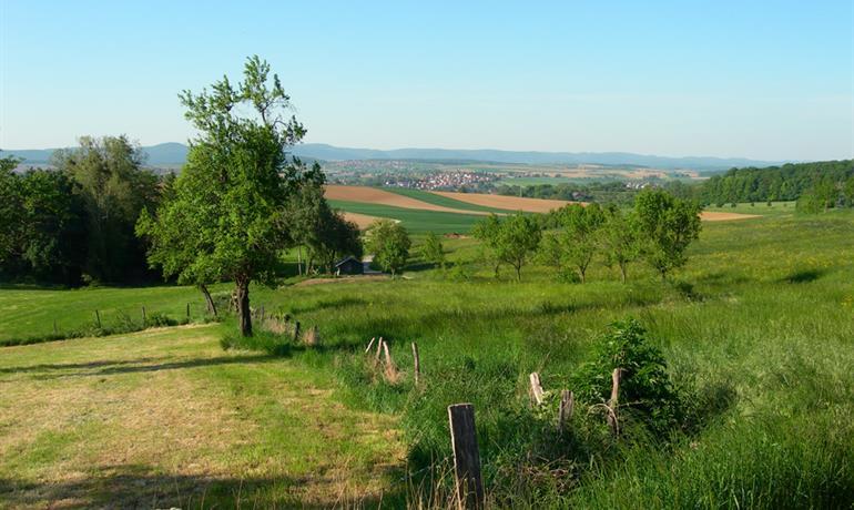 Du Val de Moder au pays des houblonnières - EuroVelo 5