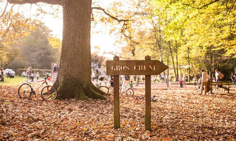 Fun walk at Gros-Chêne