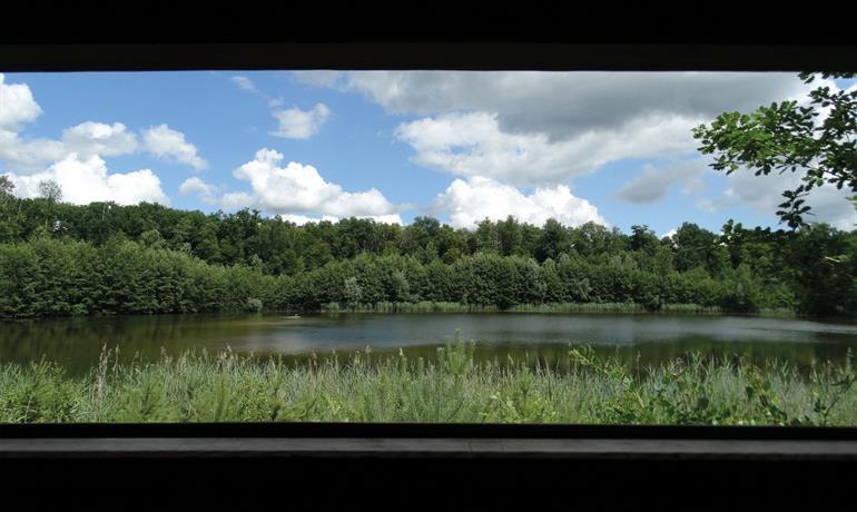 La Forêt d'Exception® de Haguenau - N°22-23-24 : Le sentier des potiers