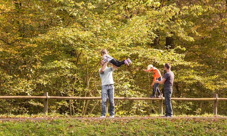Sentier - Le parcours de la forêt de Soufflenheim