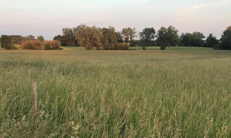 Le sentier des fermes - Anneau vert