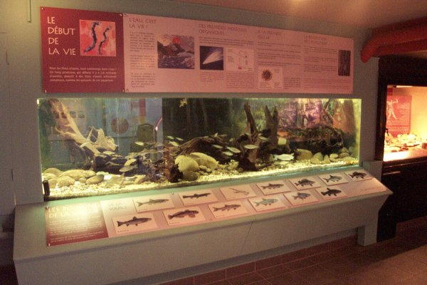 Naturzentrum Maison de la Nature du Sundgau