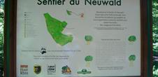 Neuwald-Interpretationspfad