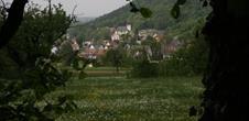 La Réserve naturelle volontaire agrée de Tagolsheim – Semberg