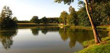 Arts et gourmandises au long des étangs