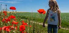 Alsace Écotourisme – Voyage initiatique au coeur du Sundgau