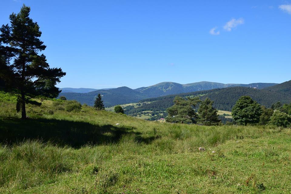 Sortie Club Vosgien : Col du Wettstein - La Grande Crête