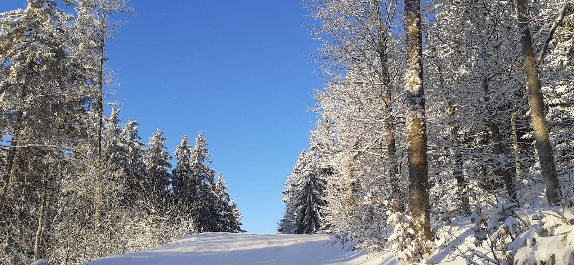 The Bagenelles ski resort