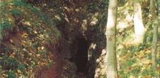 Le sentier du Bois de Saint-Pierremont