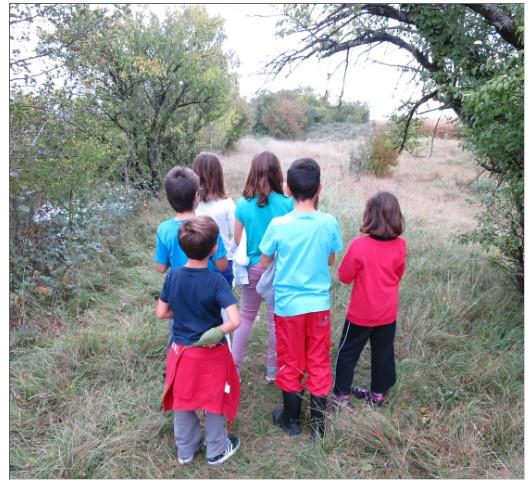 Mercredis nature pour les 6-12 ans
