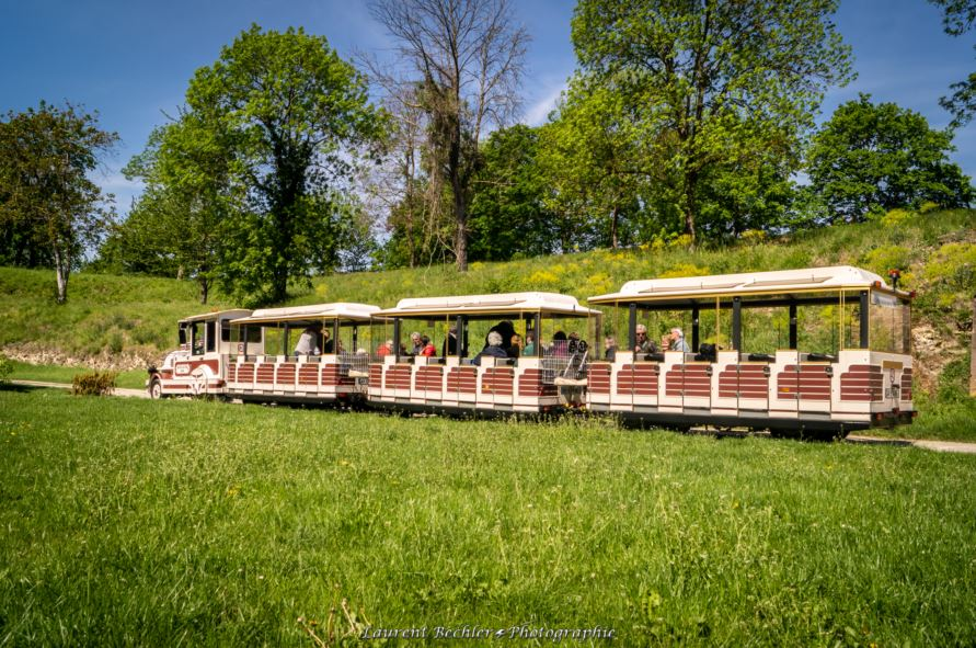 Visit Neuf-Brisach's fortifications on board a little tourist train