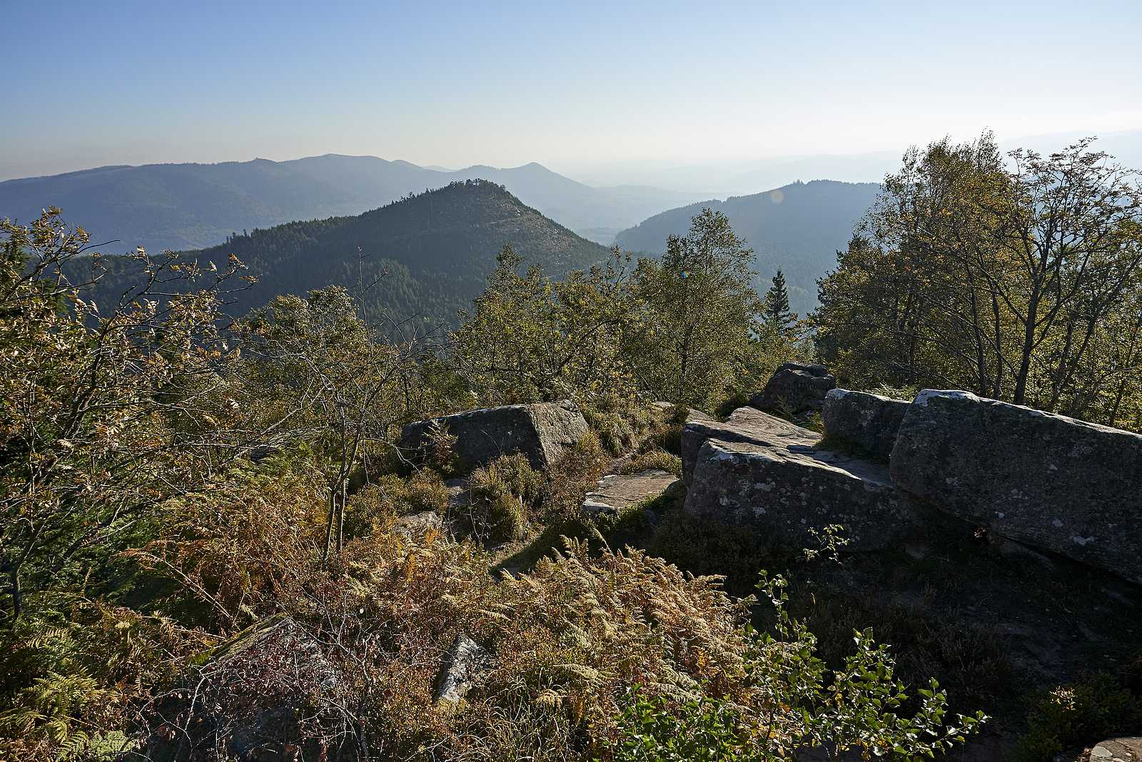 Der Donon… Der heilige Berg