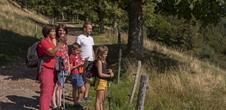 Pleasure trails: Promenade sur les hauteurs de Belmont