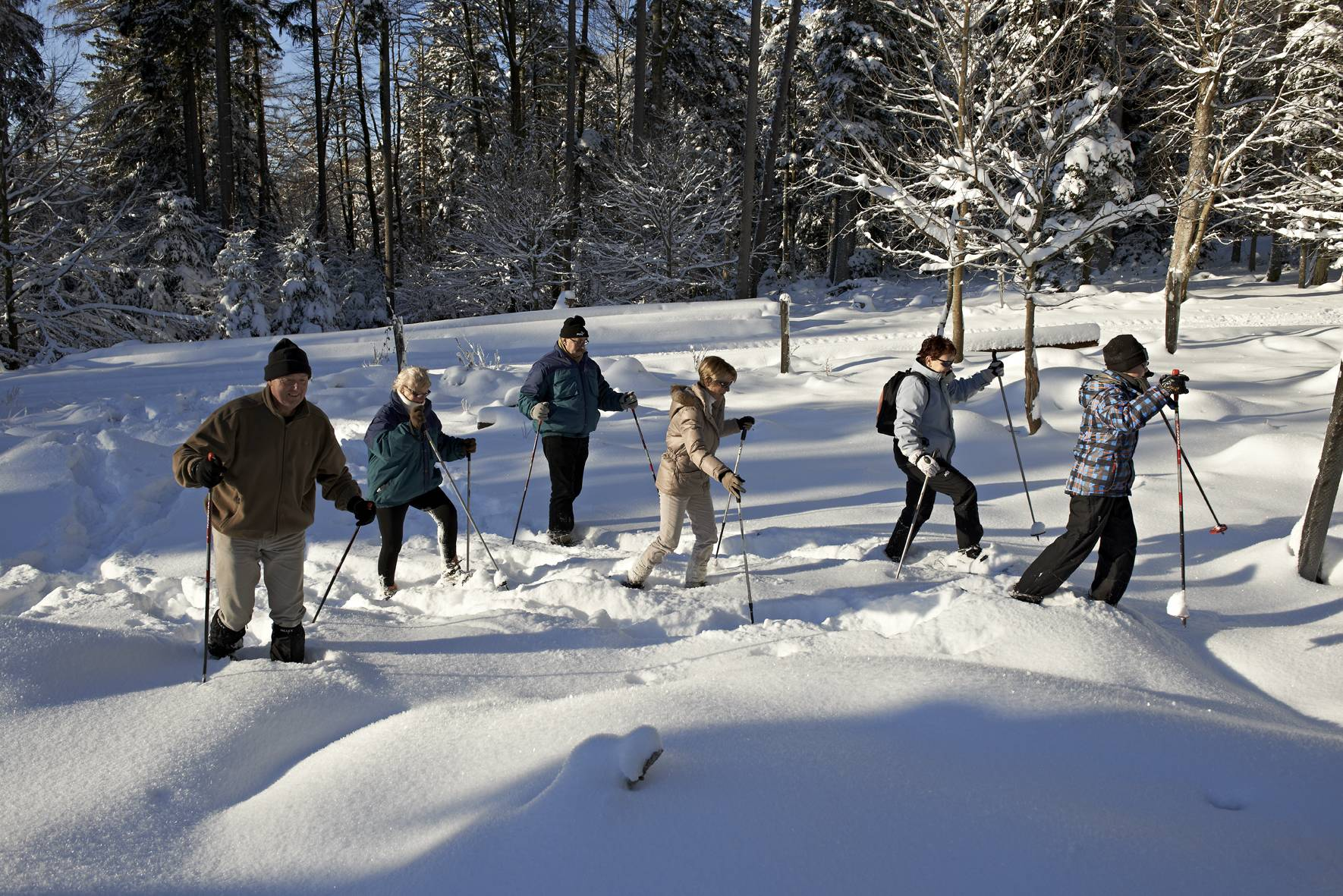 Cross-country skiing and snowshoeing at the Donon area