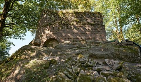 Château de Salm