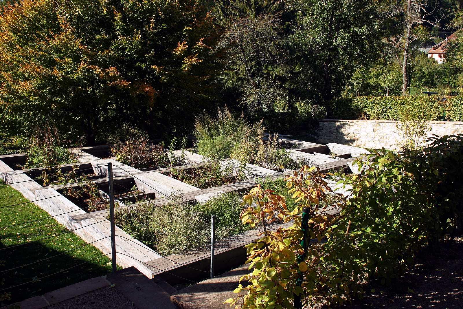 Die Gärten des Oberlin-Museums