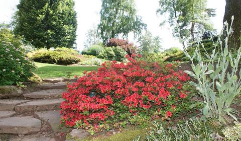 Les jardins de callunes, Ban de Sapt.  Crédit photo : Office de tourisme de la vallée de la Bruche