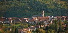Pleasure trails: Sur les hauteurs du Hohbuhl et la bataille de Muckenbach