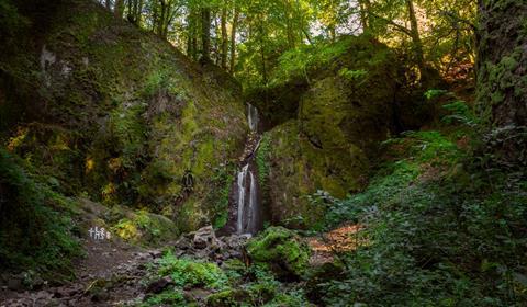 Cascade de Soultzbach. Copyright : Alain GRISE
