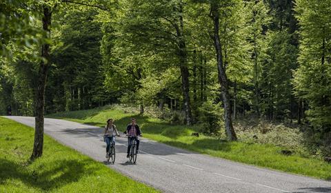 www.valleedelabruche.fr / Spach