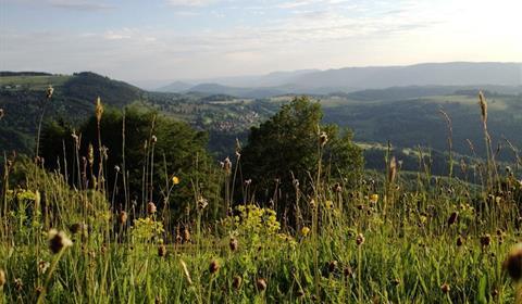 Paysage Vallée de la Bruche