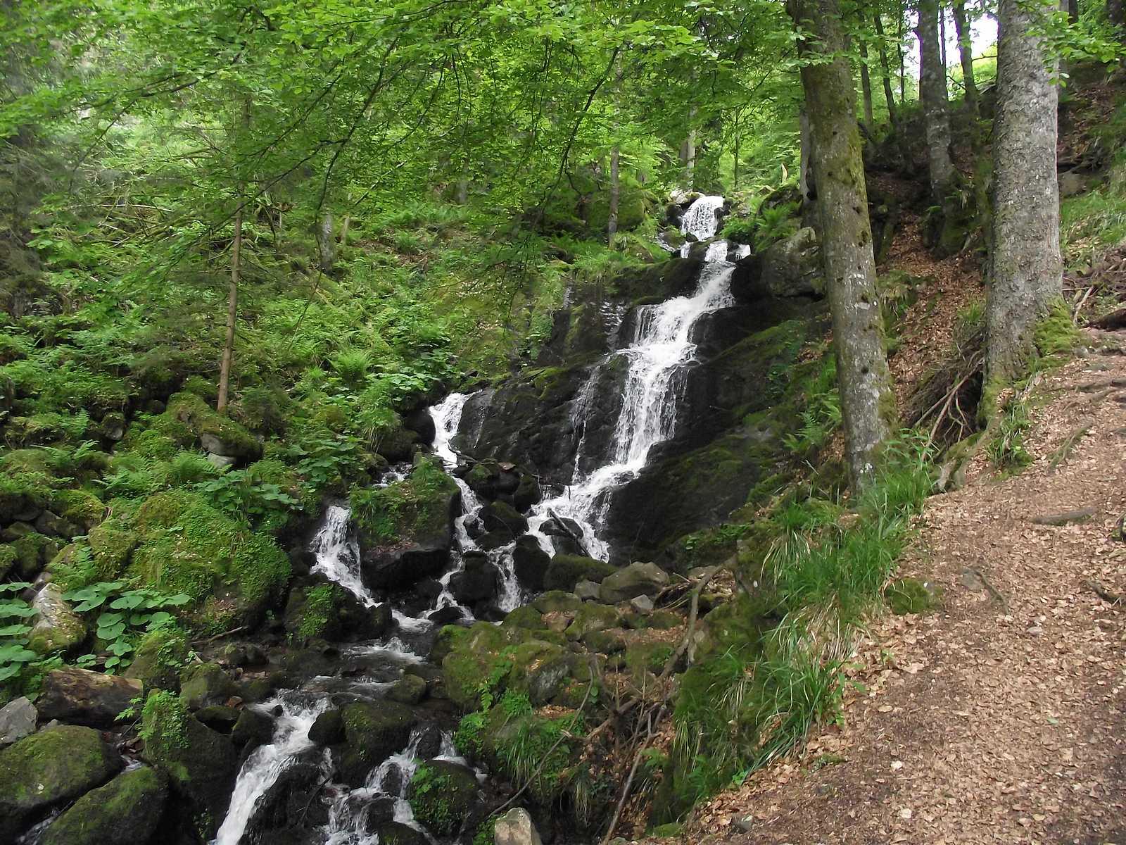 Randonnée La Cascade de la Serva par le Sommerhof