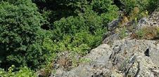The Neuntelstein's rock