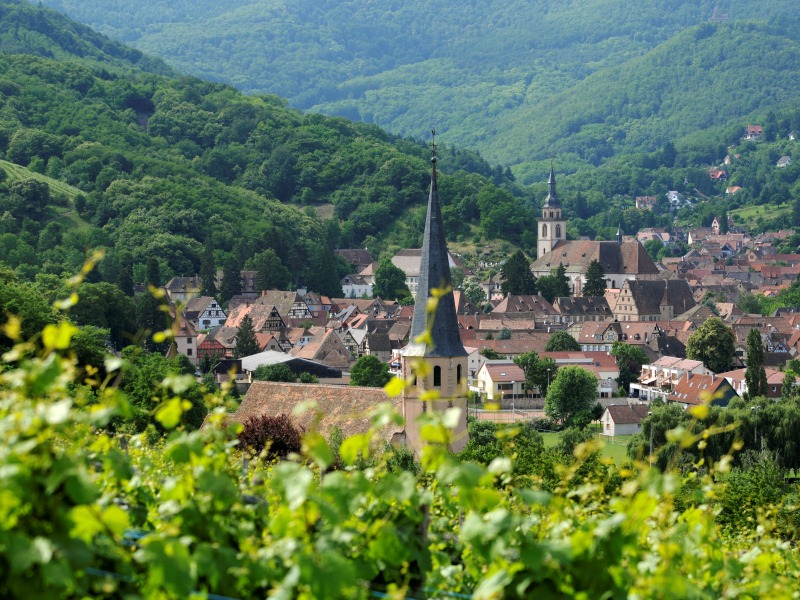 Bubbles of sweetness in Alsace