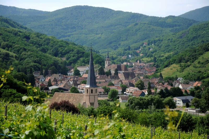 https://apps.tourisme-alsace.info/photos/cdcbarr/photos/213008302_1.jpg