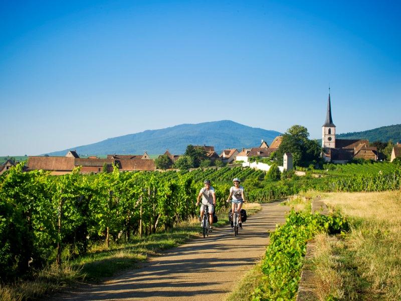 Mittelbergheim Véloroute du Vignoble d'Alsace Eurovélo 5 © ADT Bas-Rhin INFRA