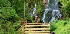 Balades nature : La cascade du Hohwald