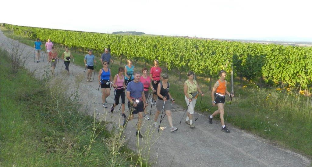 https://apps.tourisme-alsace.info/photos/cdcbarr/photos/cvd_marche_nordique.jpg
