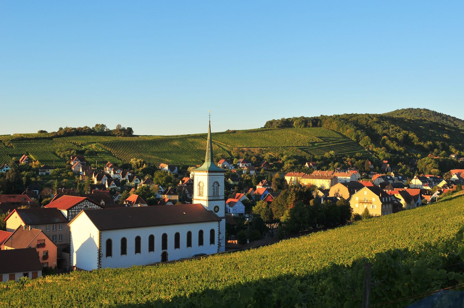 Barr, Weinhauptstadt des Unterelsass