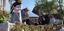 Hüsemer Bürafascht - Country festival