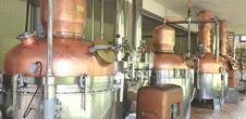 Distillerie Miclo